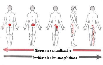 www.kineziterapija.org